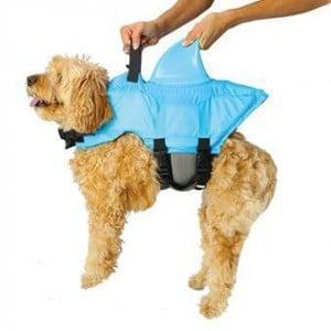 Shark Fin life Jacket