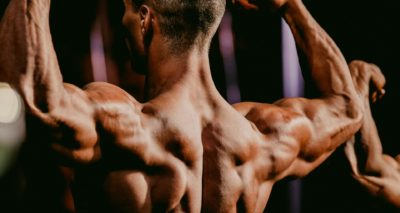 Shoulder and Back Muscles